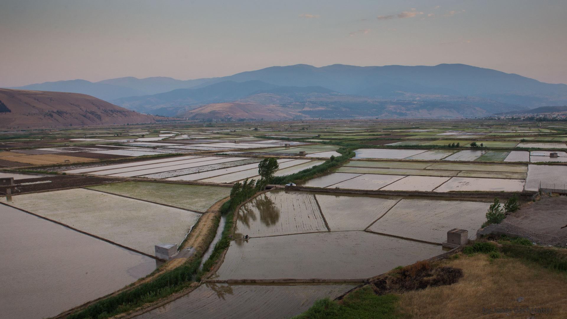 Im Tal des Sefid-Rūd - Reiskammer des Irans